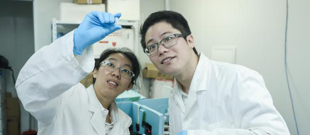 Fei Yiyan and her research partners publish on Nature